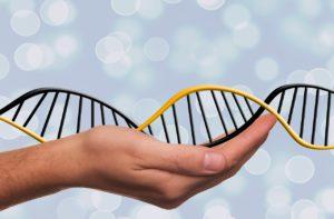 dna, adn, deoxyribonucleic acid